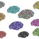 Imagem com vários cérebros coloridos